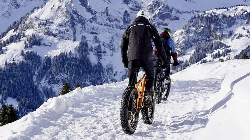 bici electrica de montaña 29 pulgadas